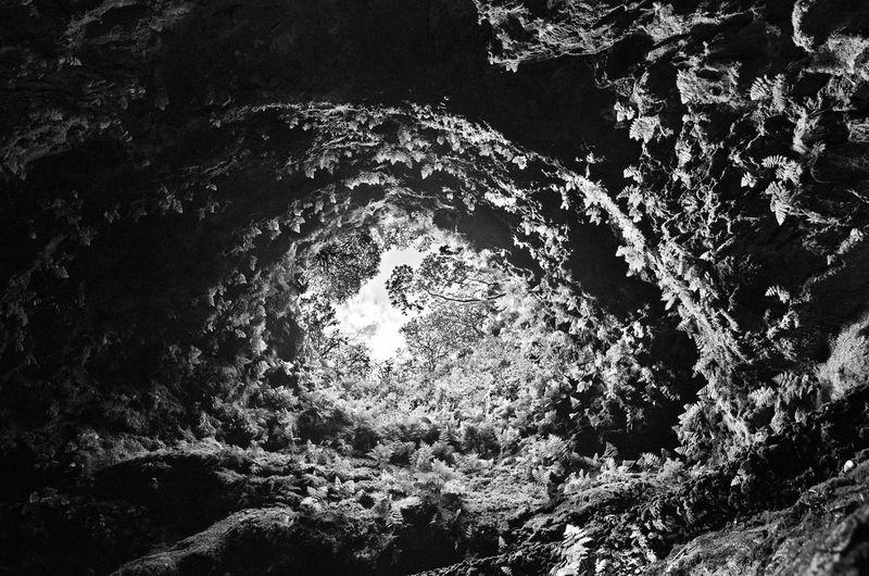 Azores Isla De Flores Azores Cave Azores Isla De Flores Cave Cave Azores Huge Cave Rock Dome