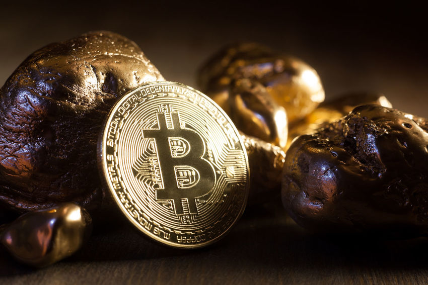 bitcoin and golden nuggets Economy Nugget Virtual Bitcoin Capital Close-up Coin Compared Cryptocurrency Digital Displayed E-business Exchange Finance Financial Gold Gold Colored Group Of Objects Indoors  Metal Shiny Symbol Technology Token Wealth