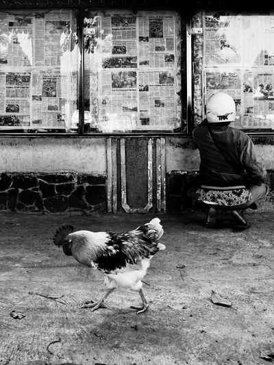 Solo, 2014. Black & White Streetphotography Blackandwhite EyeEm Indonesia