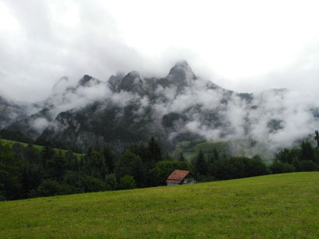 Fog Cloud - Sky Nature Social Issues Outdoors Mountain Morning Field Tourism Agriculture Landscape Tree Vacations Beauty In Nature No People Rural Scene Sky Scenics Beauty Dawn Alpessuisses Switzerland Switzerland Alps Switzerlandpictures Alpes Your Ticket To Europe