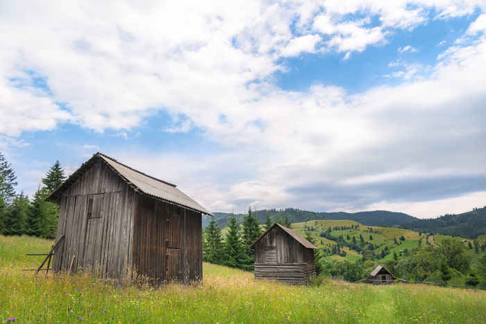 Rustic scenery with wooden barns in a row, in the middle of a green meadow full of wildflowers, in the Carpathians mountains, near Sadova, Romania. Romania Blue Sky Clouds Cottage Countryside Field Grass Landscape Meadow Nature Outdoors Rural Scene Spring Spring Time Summer