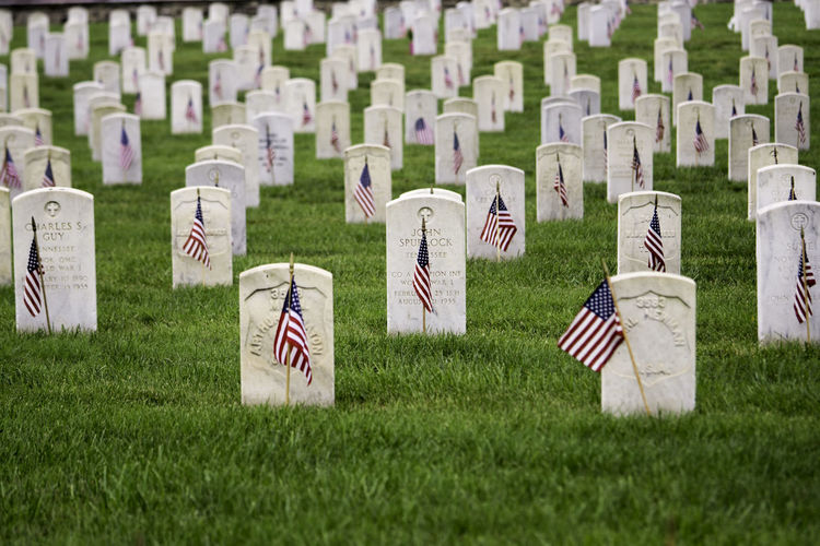 Memorial Memorial Day War Memorial Cemetery Flag Flags Gravestone Memorial Military Patriotism Remember Remembering Remembrance