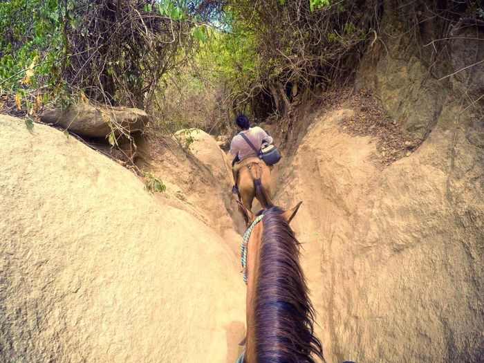 The KIOMI Collection on horseback last summer in Tayrona Park ! Colombia Adrenaline Junkie Speed Traveling Exploring Discovering Hanging Out Taking Photos Enjoying Life Hello World Check This Out Vscocam