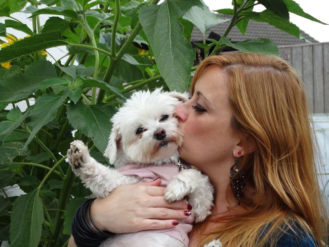 Pets Dog Love Embracing Young Adult Friendship One Animal Long Hair One Person Blond Hair Real People Domestic Animals Day Young Women One Young Woman Only Outdoors West Highland White Terrier Smiling Women Adult Lilymayparker.blogspot.be