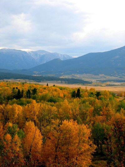 Fall colors! The Week On EyeEm