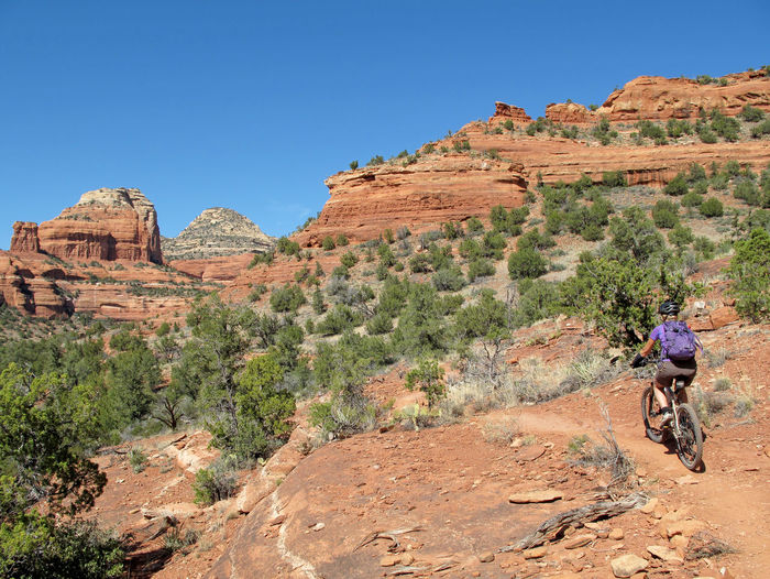 Mountain biker in the red rocks, Sedona, Arizona, USA One Person Riding Lifestyles Mountain Nature Outdoors Bicycle Bike Mountain Bike Mountain Biking Mountain Biker Sedona Sedona, Arizona Arizona Extreme Sports Adventure Speed Cyclist Action Red Red Rocks  Redrocks Woman Girl Female