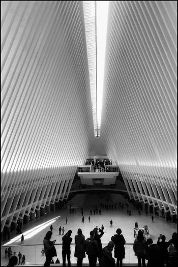 Oculus NY Architecture New York Blackandwhite Kris Demey Photography Crowd Real People Group Of People Large Group Of People Built Structure Architecture High Angle View Men Sport Lifestyles Day Ceiling Leisure Activity Indoors  Arts Culture And Entertainment Women Adult Spectator