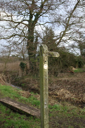 Beauty In Nature Day Footpath Footpath Sign Grass Moss Mud Nature No People Outdoors Sky Surrey Countryside Tree Walk