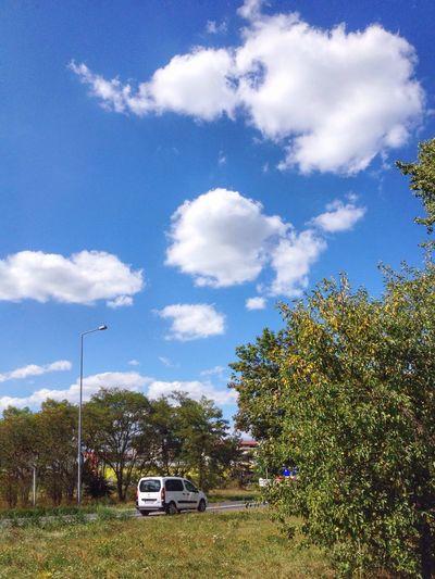 Summer sky Mode Of Transportation Car Sky Cloud - Sky Tree Nature Road Blue City
