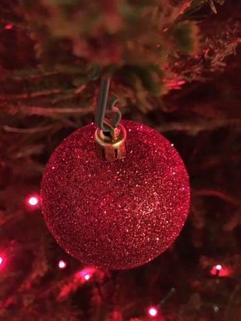 Christmas ball Christmas Christmas Decoration Christmas Tree Celebration Christmas Ornament Holiday - Event Decoration Tradition Hanging Tree Focus On Foreground Christmas Lights Bauble Red Cultures No People Close-up Celebration Event Indoors  Illuminated