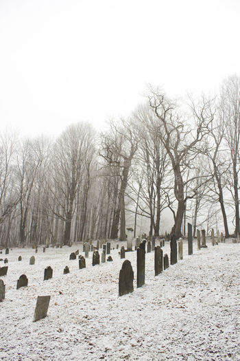 An old cemetery in Vermont surrounded by leafless trees on a foggy April morning, with a dusting of snow on the ground. Vermont, Graveyard, Snow, April, Cemetery, Gravestones, Fog, Morning, Historical, Old, Man And Nature, Memento Mori, Nature And Culture, Old, Archaeology, Historical, Museum, Travel, Building, Tourism, History, Landmark, Famous, Architecture, Historic, Culture, Ancient, Heritage, Chateau, City, Stone, Town, Site, Archaeological, National, Monument, Temple Trees, Sky,