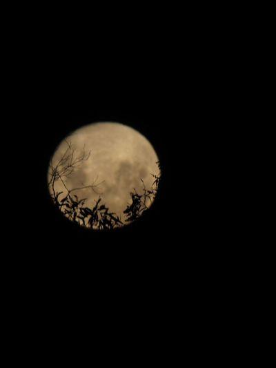 Súper Moon Moon