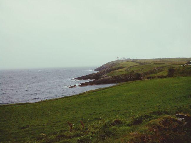Lighthouse Irish Enjoying Life