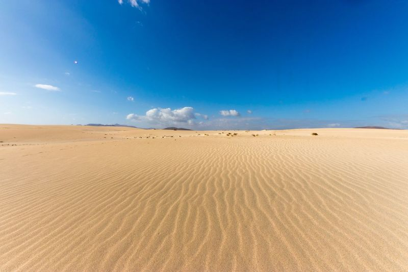 Desert in Fuerteventura Passion Love Sand Sand Dune Scenics Nature Landscape Arid Climate Desert Sky Tranquility Blue Outdoors Tranquil Scene Day Cloud - Sky Beauty In Nature No People EyeEmNewHere Colour Your Horizn EyeEmNewHere EyeEmNewHere