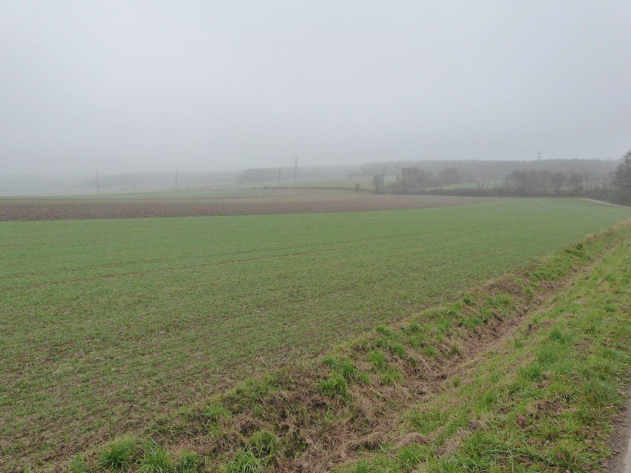 field, agriculture, landscape, fog, nature, rural scene, weather, day, beauty in nature, tranquil scene, tranquility, no people, outdoors, growth, grass, plough, scenics, sky