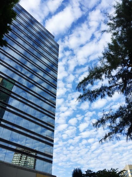 Sky And Clouds Reflection Cumulus Cloud Architecture Cloud - Sky Cumulus Beauty In Nature Sky Sky_collection Skyporn Sky And City EyeEm New Here