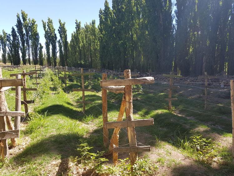 Cultivo Farm Granja Huerta