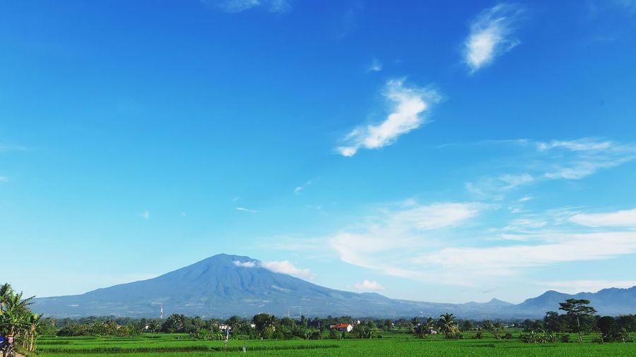 Gede Pangrango Mountain Cianjur West Java  INDONESIA Green Mountain Blue Volcano Sky Cloud - Sky The Portraitist - 2019 EyeEm Awards