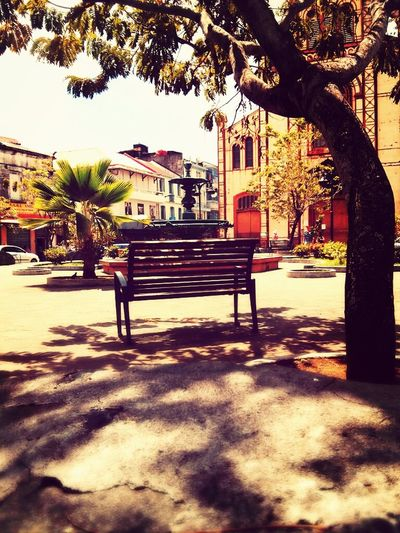Streetphotography Bench Public