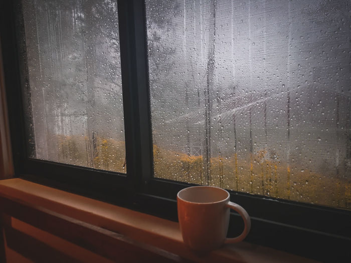 Close-up of coffee cup on window