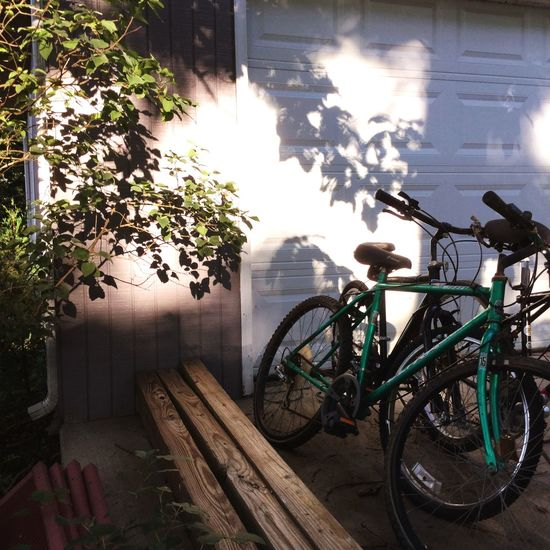Go Bicycle Transportation Plant Mode Of Transportation Nature Sunlight Land Vehicle No People Day Outdoors Parking City Architecture Shadow
