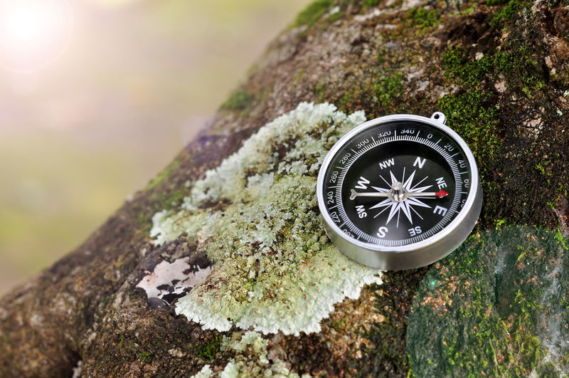 Compass Navigational Instrument Accuracy Close-up Day Direction Focus On Foreground Guidance Land Lichen Metal Moss Nature Navigation Navigational Compass No People Outdoors Plant Rock Rock - Object Searching Selective Focus Tree Tree Trunk Trunk