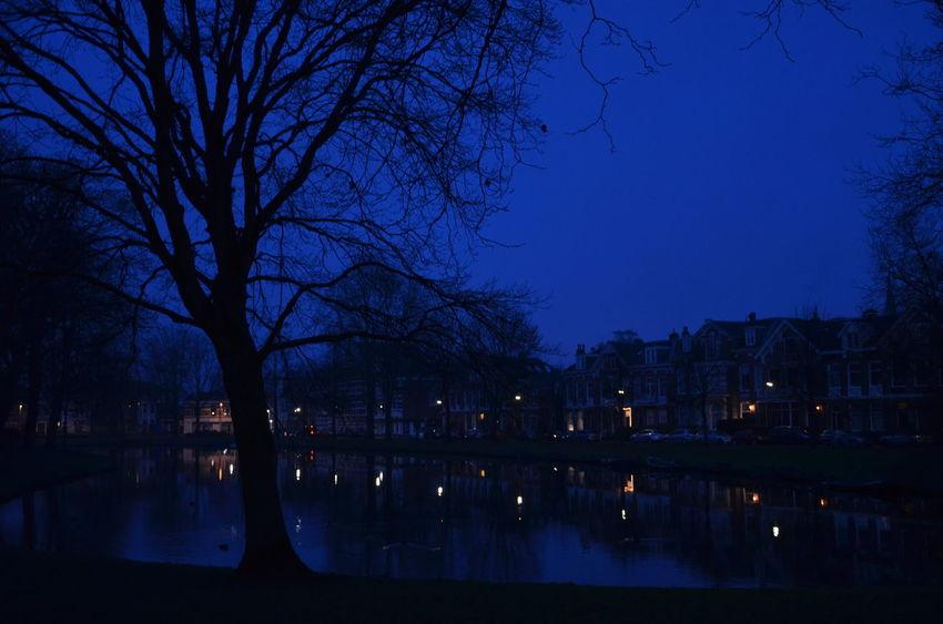 7:40 am Kenaupark, Haarlem - Netherlands Haarlem Kenaupark Blue Morning Morning Morning Light Canal Dutch Canals Lights NikonD5100 Nikon Reflection Water Sky Tree Blue