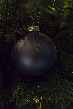 Celebration Christmas Christmas Ball Christmas Bauble Christmas Decoration Christmas Tree Close-up Festive Indoors