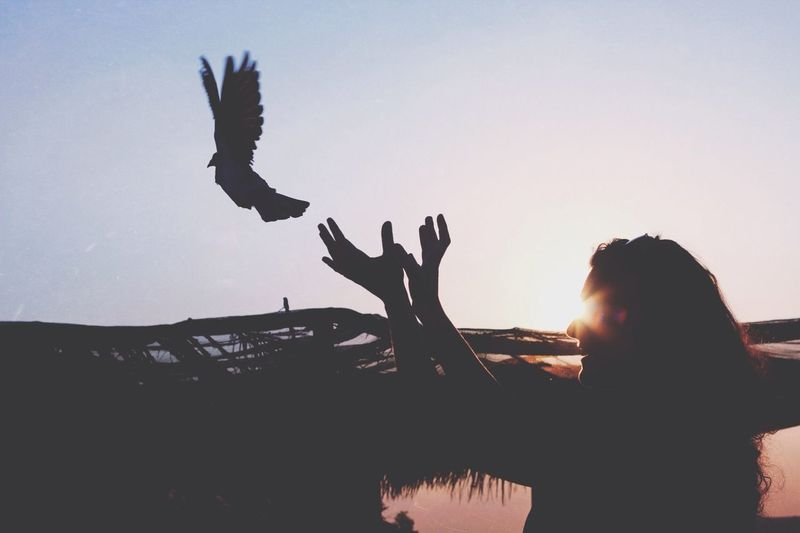 Free What Does Peace Look Like To You? EyeEm Best Shots Eye4photography  Sunset Silhouettes The Moment - 2015 EyeEm Awards The Great Outdoors - 2015 EyeEm Awards Glitch Capture The Moment