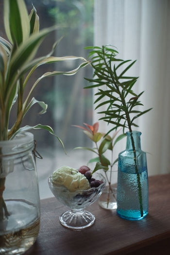 Potted plant in glass vase on table