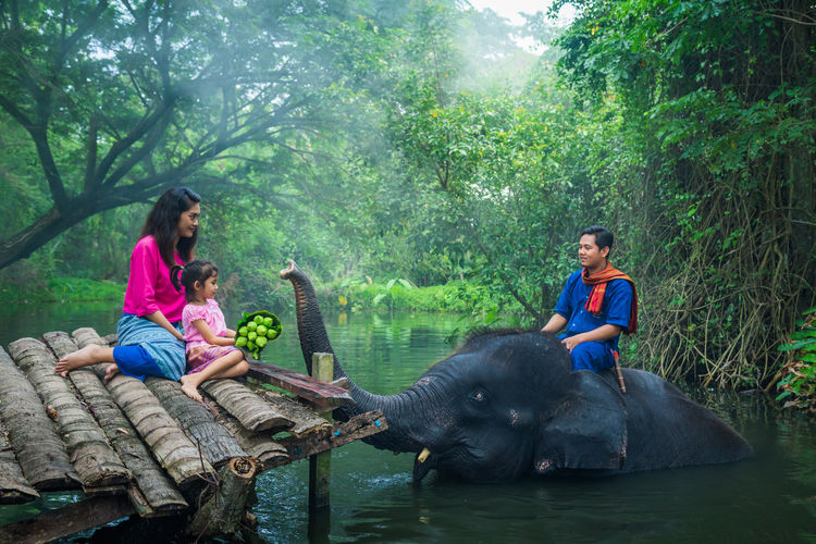 Mother and daughter sitting on pier father sitting on elephant in river