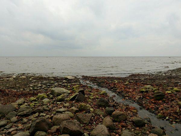 North The Gulf Of Finland Baltic Sea Day Autumn🍁🍁🍁 Sky Rainy Day Stones Beachphotography Petergof Sankt-Petersburg Russia