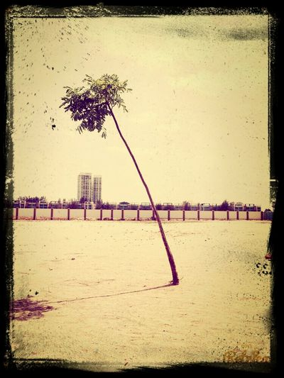 Lonely~
