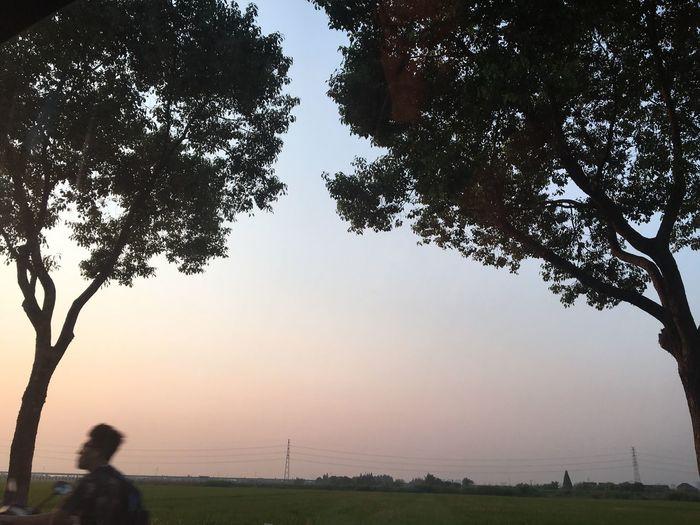 Woman standing on grassy field