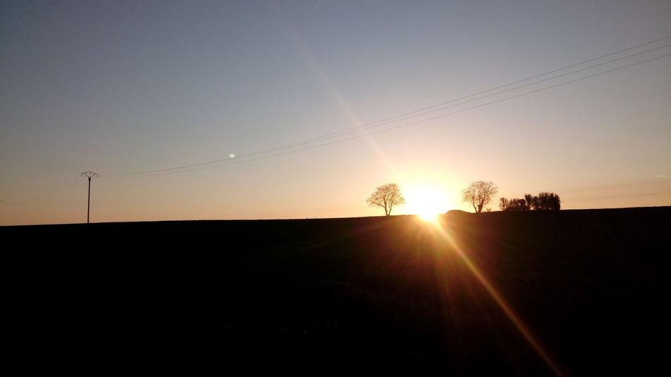 Sunset Rural Scene Agriculture Sunlight Silhouette Sun Field Summer Sunbeam Sky