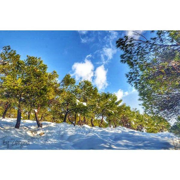 Nature Snow Neige Tunisia IGDaily Hot_shotz Insta_crew Natgeo Master_pics Ig_worldclub World_shotz Kef Idreamoftunisia Bestoftunisia Livetunisia Exklusive_shot IgersTunisia Big_shotz Theworldshotz Global_hotshotz Stounsi Nikontop Igerstn Tnshots Love_tunisia Etunisie Tnigers Ig_masters Iger_edit