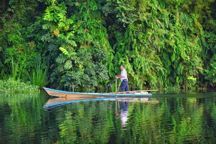 A beautiful morning at Tasik Raban, Perak. Rowingboat Morning Lake Reflection Tropical Forest Mobility In Mega Cities