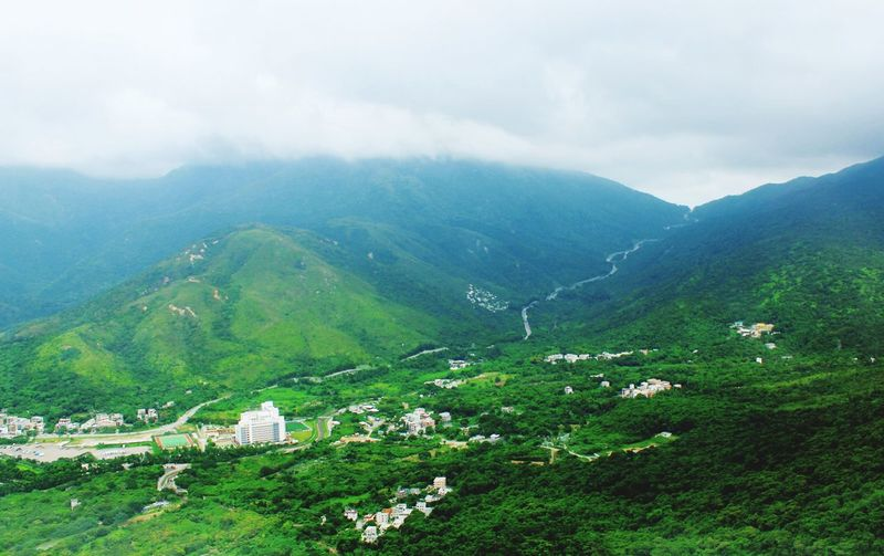 Ngong Ping Ngong Ping Beauty In Nature Mountain Plant Scenics - Nature Landscape Environment Cloud - Sky Tree Tranquility Land Mountain Range Nature Sky No People Outdoors Day Green Color