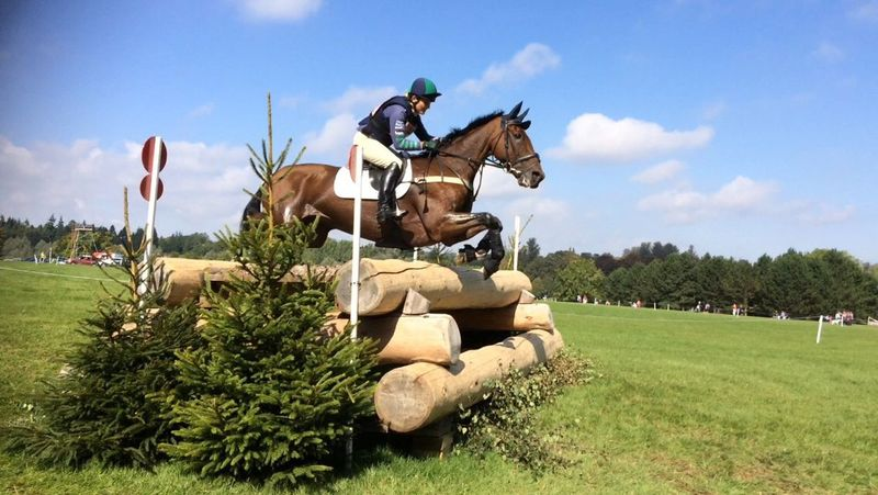 Horse Eventing Blenheimpalace Cross Country Jumping