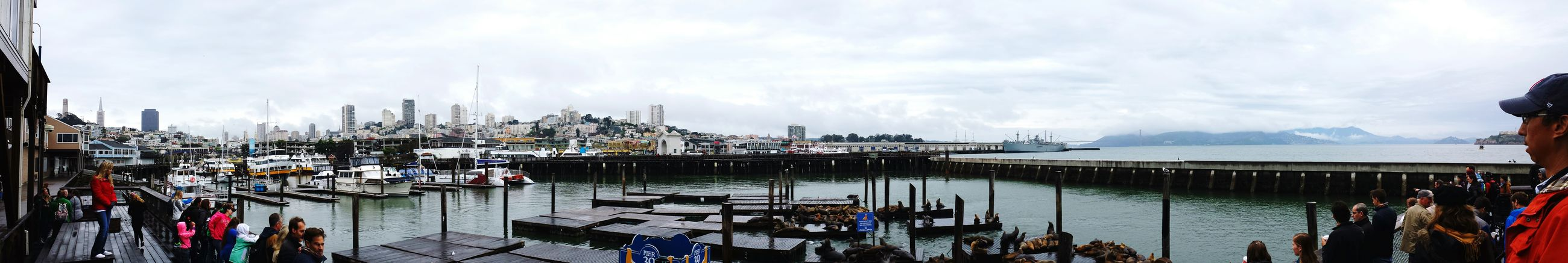 Life Of A Flight Attendant San Francisco Fisherman's Wharf Pier 39 Sea Lions Sea Lions In San Francisco Panoramic Photography Panoramic View The Minimals (less Edit Juxt Photography) Travel Photography Eye Em Around The World Eye Em Travel Fascination