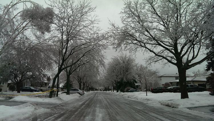 Ice Storm 2014, Ontario Snow ❄ Winter Ontario No Filter
