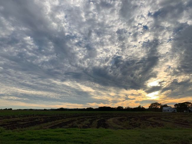 Great sunset after seven days with no sunshine #shotwithiphoneXSmax Cloud - Sky Landscape Environment Sky Field Scenics - Nature Beauty In Nature Rural Scene Tranquil Scene Agriculture Nature No People Farm Sunset Outdoors