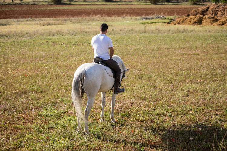 Rear view of man riding horse
