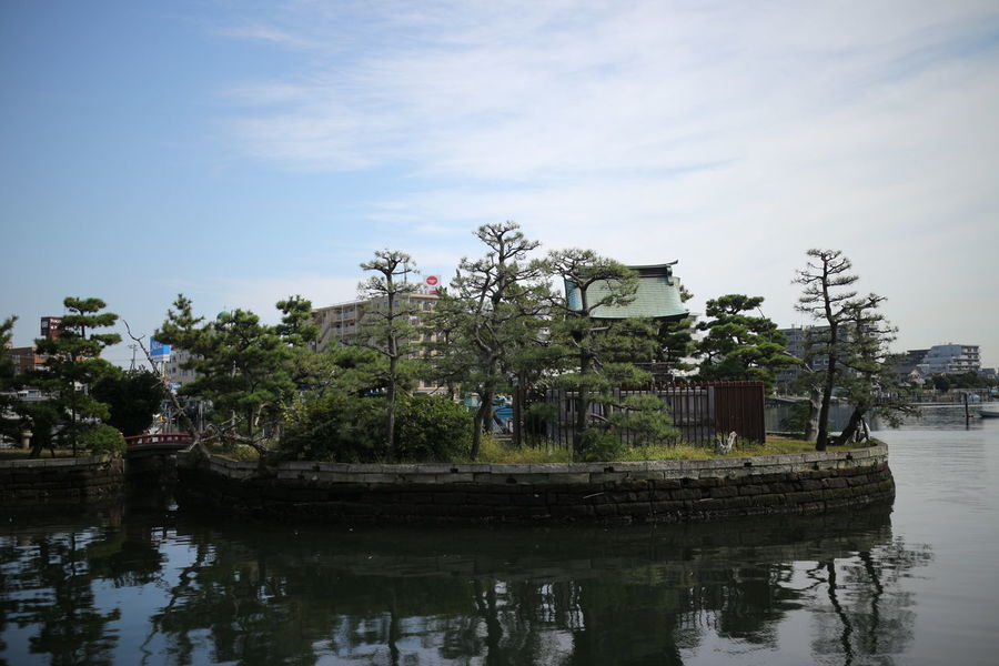 yakohama Architecture Beauty In Nature Botanical Garden Bridge - Man Made Structure Day Floating On Water Garden Japan Nature No People Outdoors Park Plant Reflection Sky Tree Water Yokohama