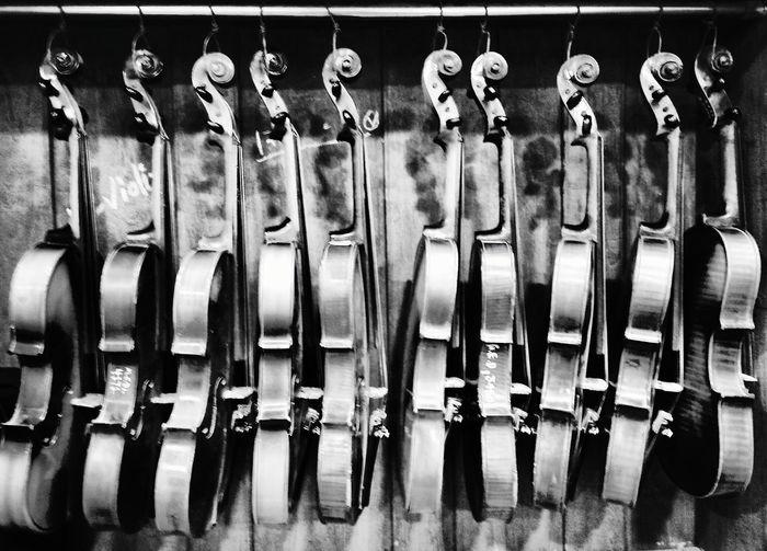 Violins hanging against wall at shop