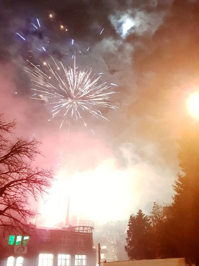 Feuerwerk Sylvester Feuerwerk Celebration Firework Display Firework - Man Made Object Exploding Sky Night Arts Culture And Entertainment No People Illuminated Tree Multi Colored Event Outdoors