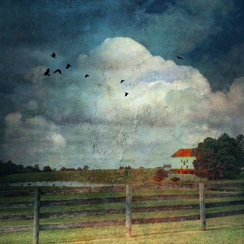 Crebilly farm -