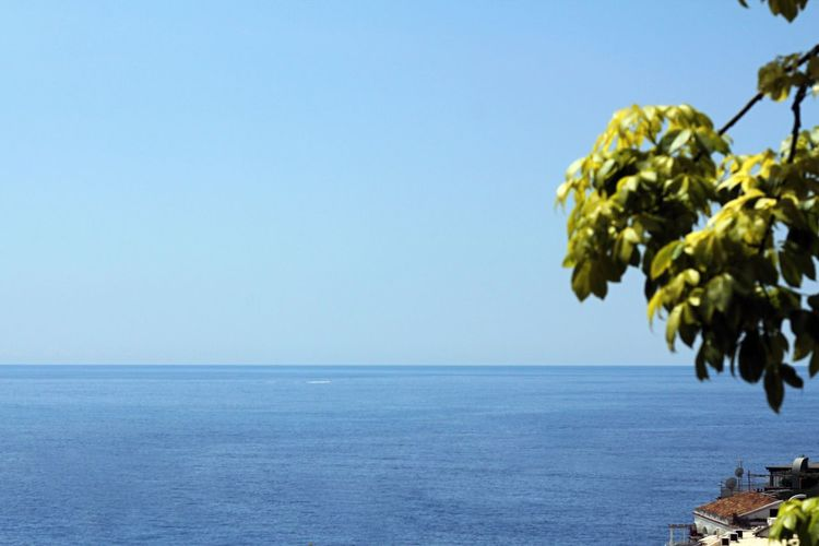 A clean view of the sky and the blue sea from the hills of Positano, interrupted only by the branch of a tree. Amalfi Coast Travel Photography Wanderlust Beach Beauty In Nature Blue Clear Sky Day Europe Freshness Horizon Over Water Island Nature No People Outdoors Positano Sailing Scenics Sea Sky Tranquil Scene Tranquility Travel Destinations Tree Water
