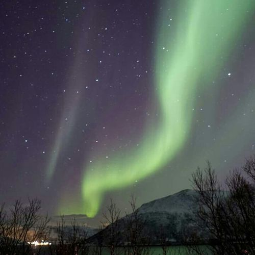 Northern Lights Aurora Borealis Norway Tromsø Photooftheday Traveling Travel