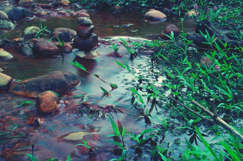 Water Nature Plant Outdoors Growth No People Day Beauty In Nature Long Exposure Stream Rock Rocks Kachinstate Myanmar Canon Eos M2 Traveling EOSM2 Travel Photography Beauty In Nature Nature